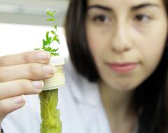 Ingeniería en Biotecnología - Unab